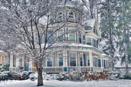 Colorado Pest Pros - Pests that Invade the Home During the Winter Season